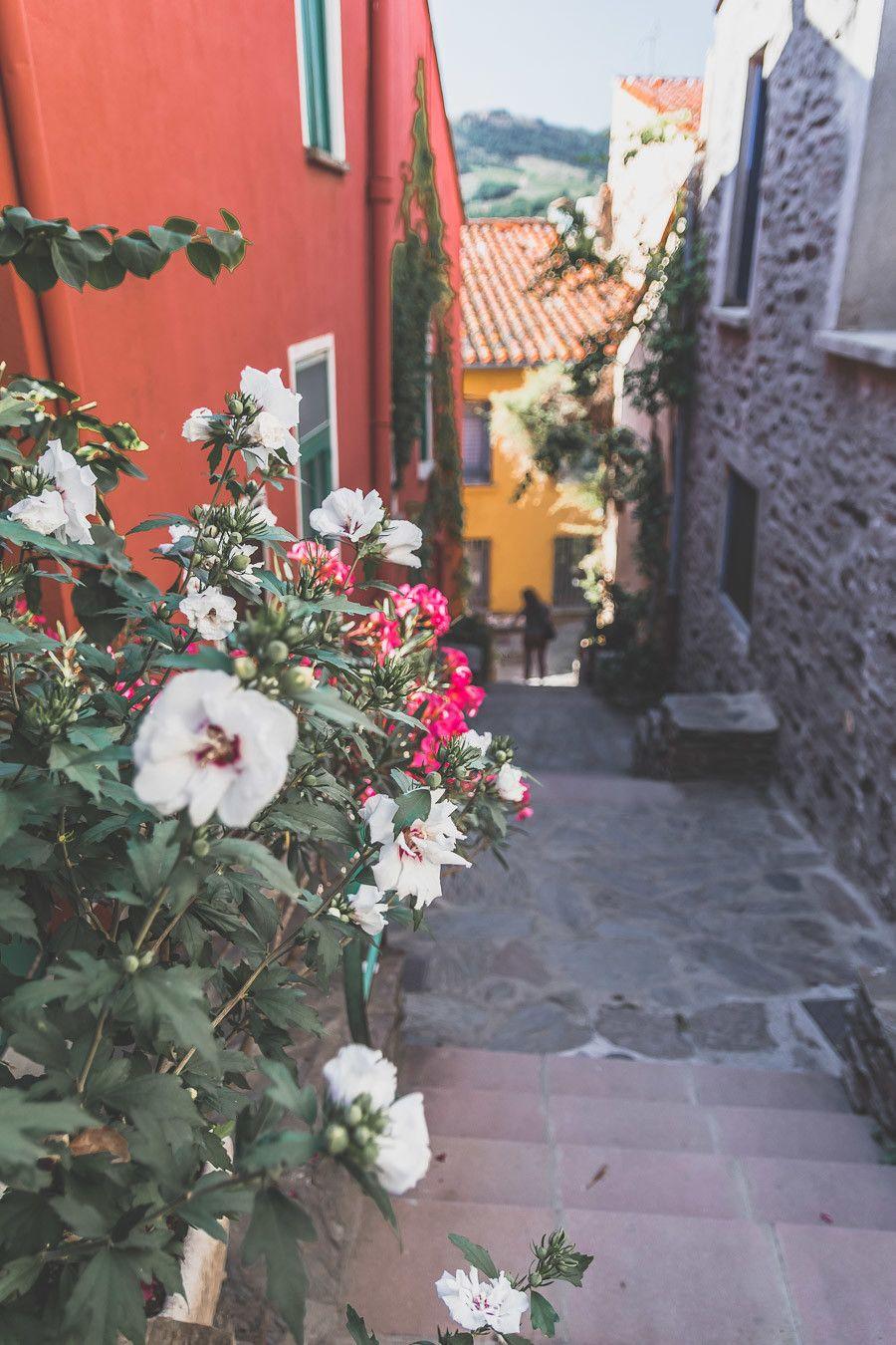 Que faire dans les Pyrénées Orientales?