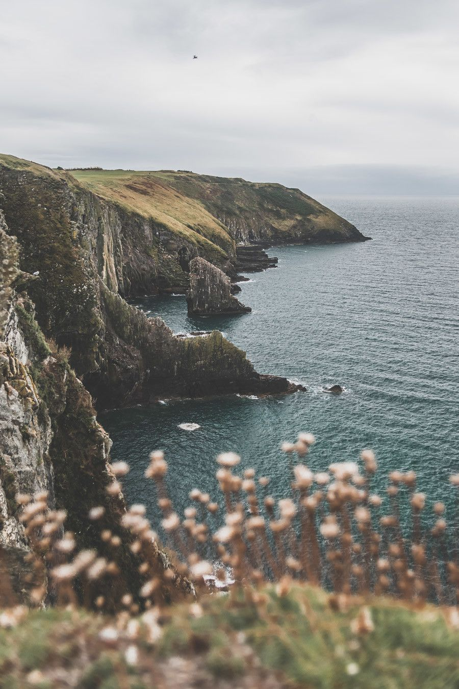 Les falaises découpées du sud de l'Irlande