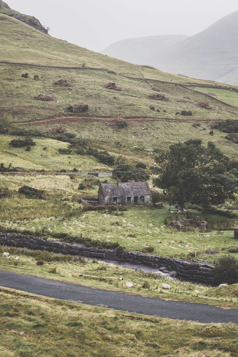 campagne irlande road trip