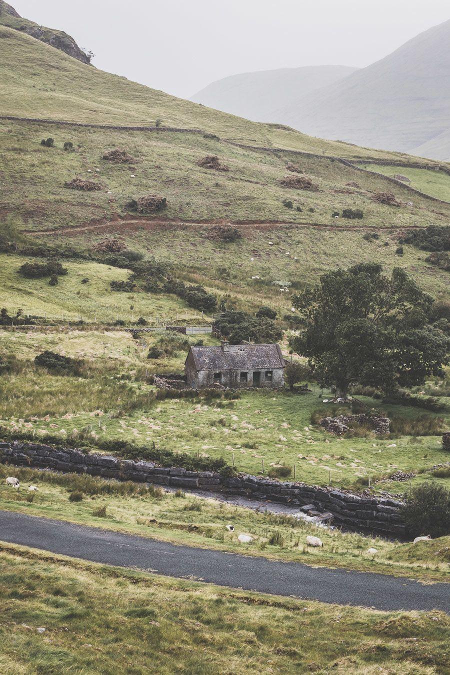 paysage irlande verdoyant