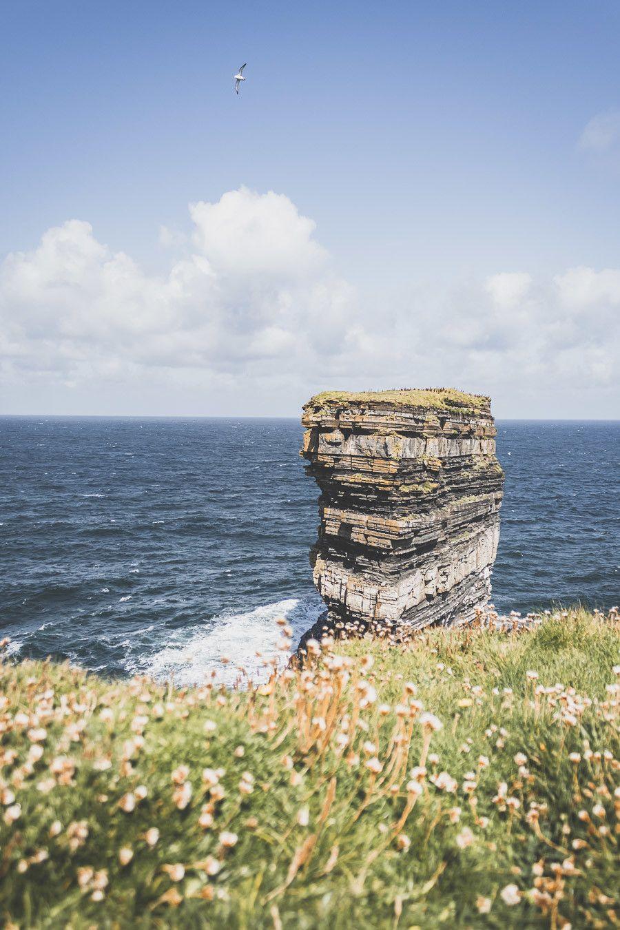 Falaises et herbes vertes - blog voyage Irlande