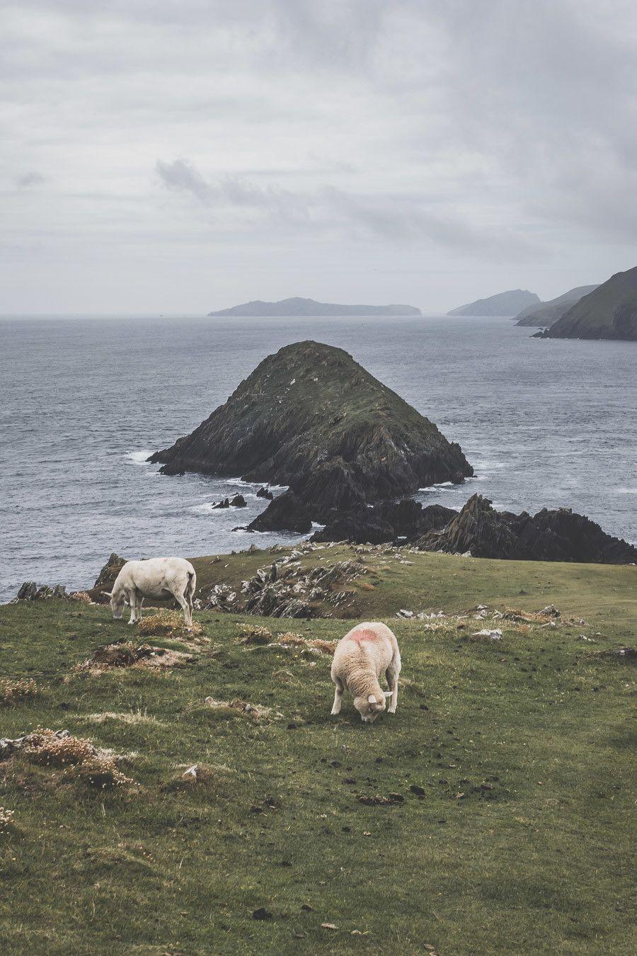 Récit de voyage dans le Kerry