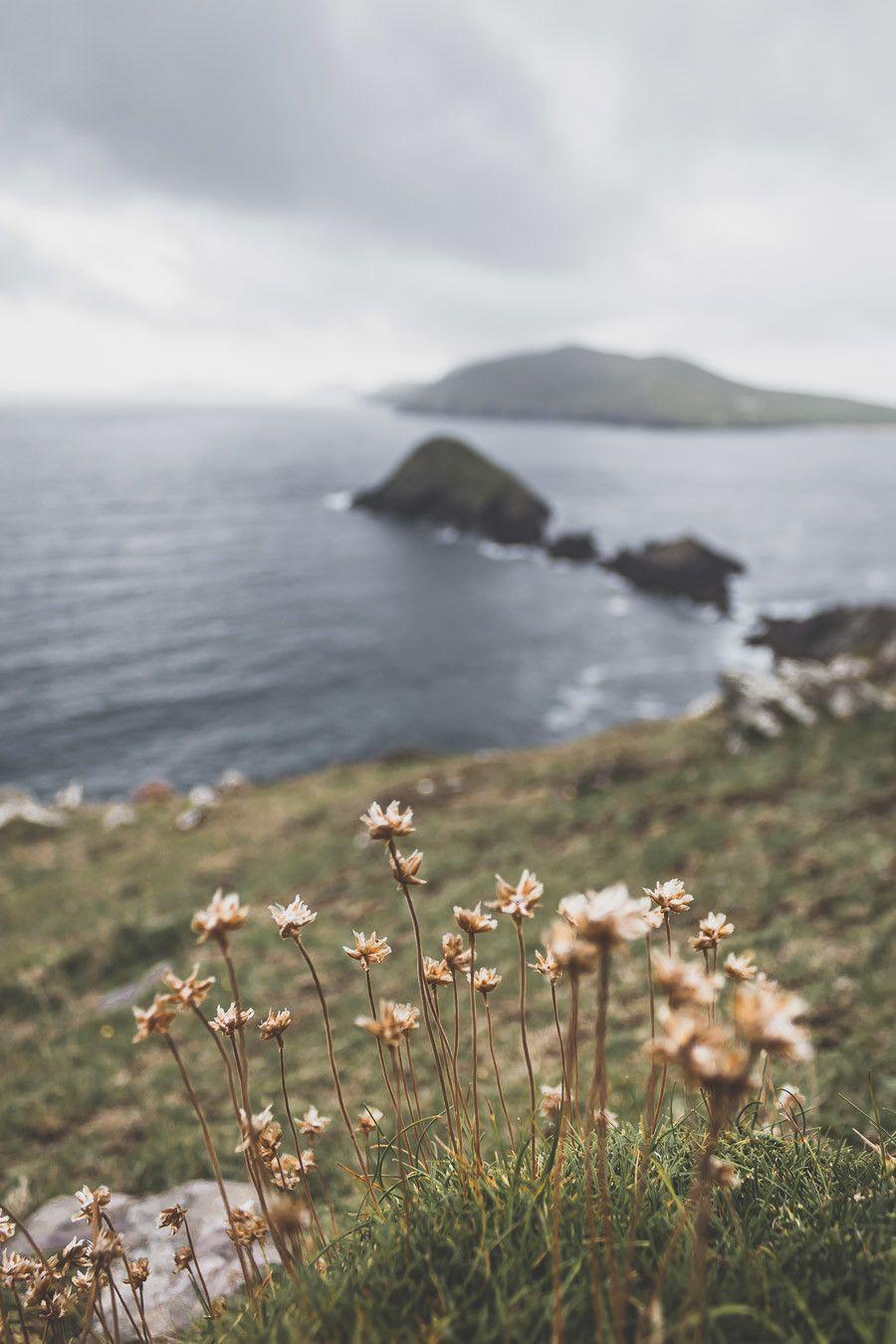 Dunmore Head dans le comté de Kerry un lieu incontournable