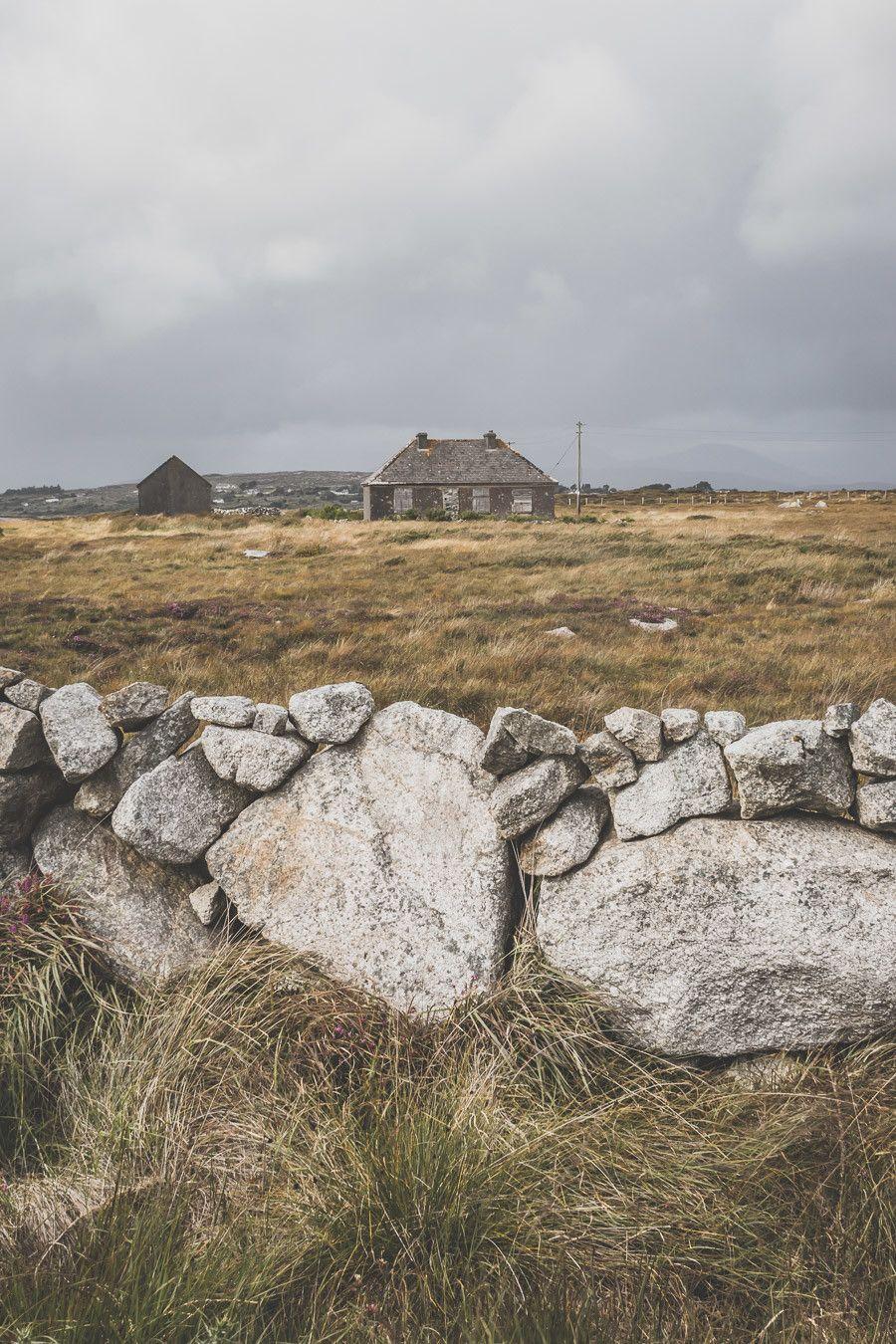 Vous souhaitez visiter le Connemara ? Découvrir la ville de Galway et ses alentours ? Ce guide est fait pour vous ! Il saura vous aiguiller / Irlande road trip / Road trip Irlande / Irlande paysage / Irlande voyage / Voyage Irlande / Irlande voyage / Voyage Irlande / Voyage en Irlande / Carnet de voyage en Irlande / Carnet voyage Irlande / Connemara Irlande / Connemara national park / Galway Ireland / Galway Irlande / Galway things to do