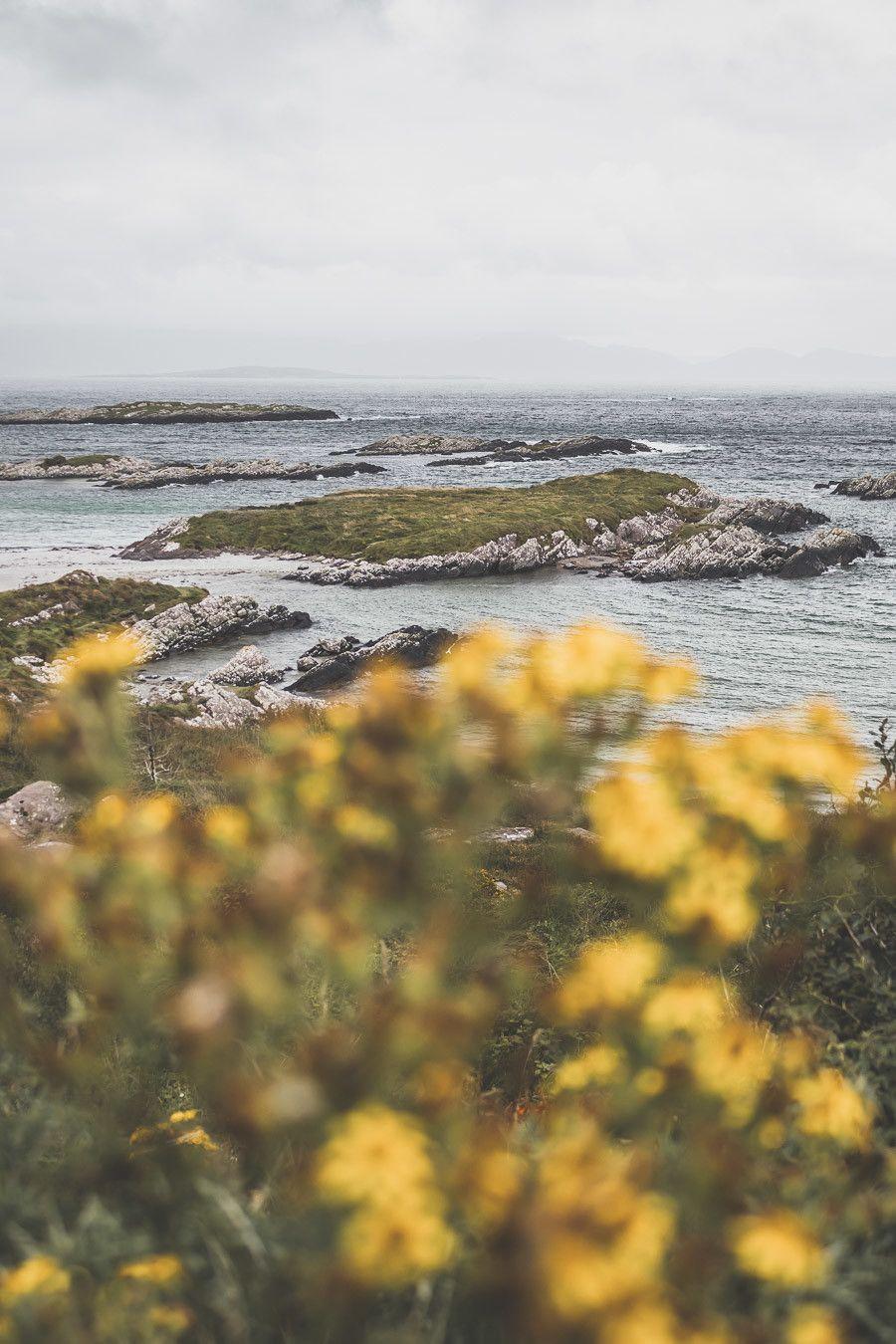 La magnifique route de l'anneau de Kerry