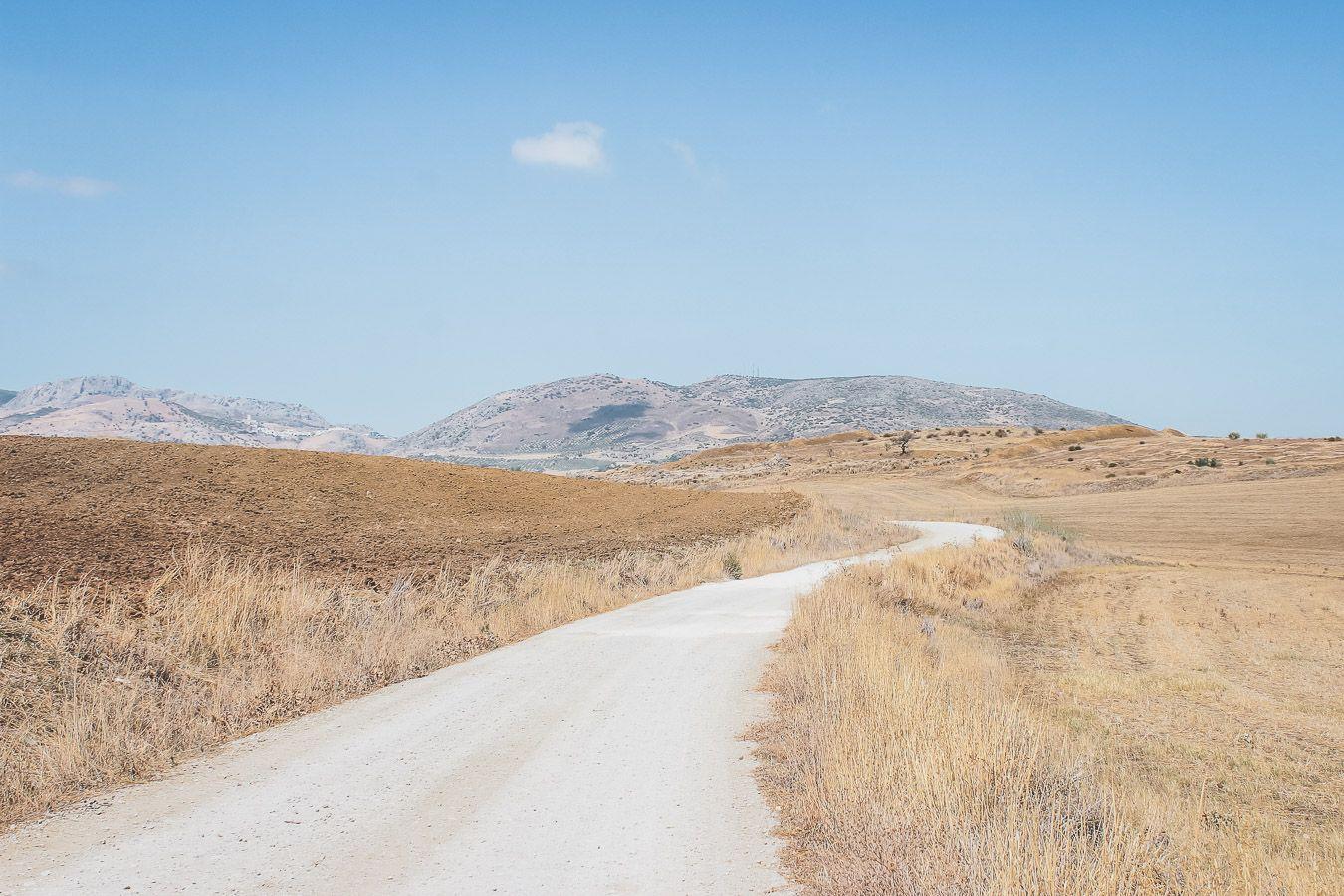 Paysage d'Andalousie