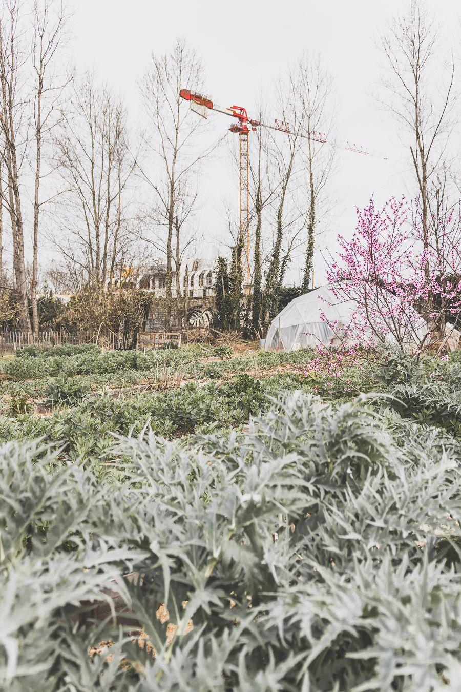 Visiter Bordeaux en 2 jours - Darwin Eco-Système