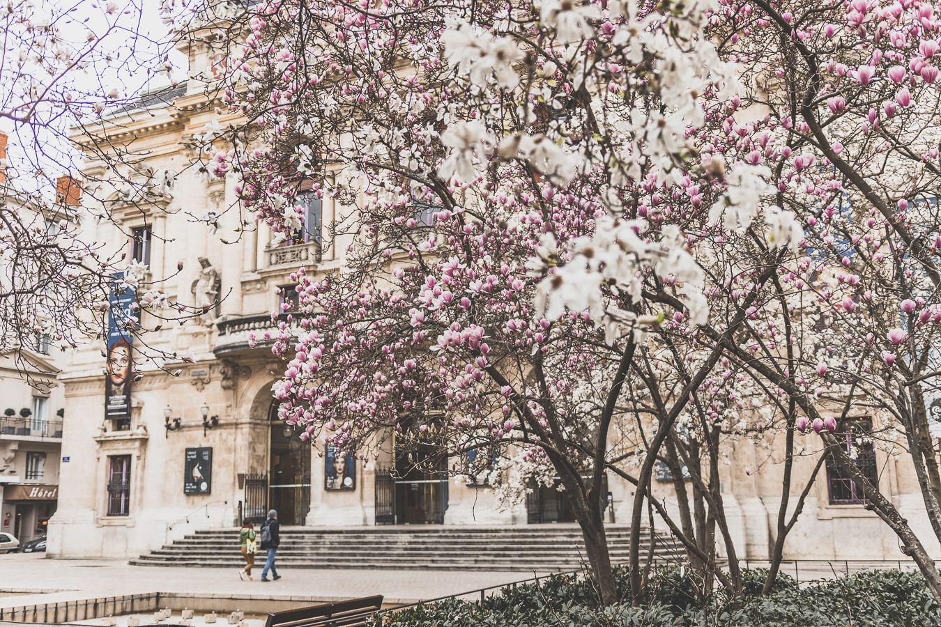 La Place des Célestins en février