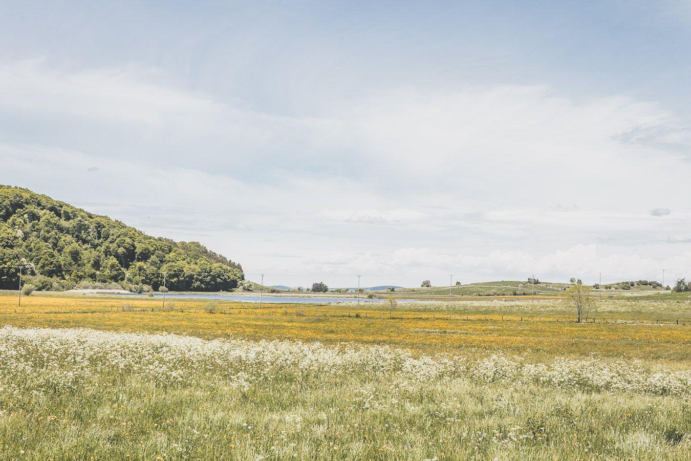 Lac de l'Aubrac