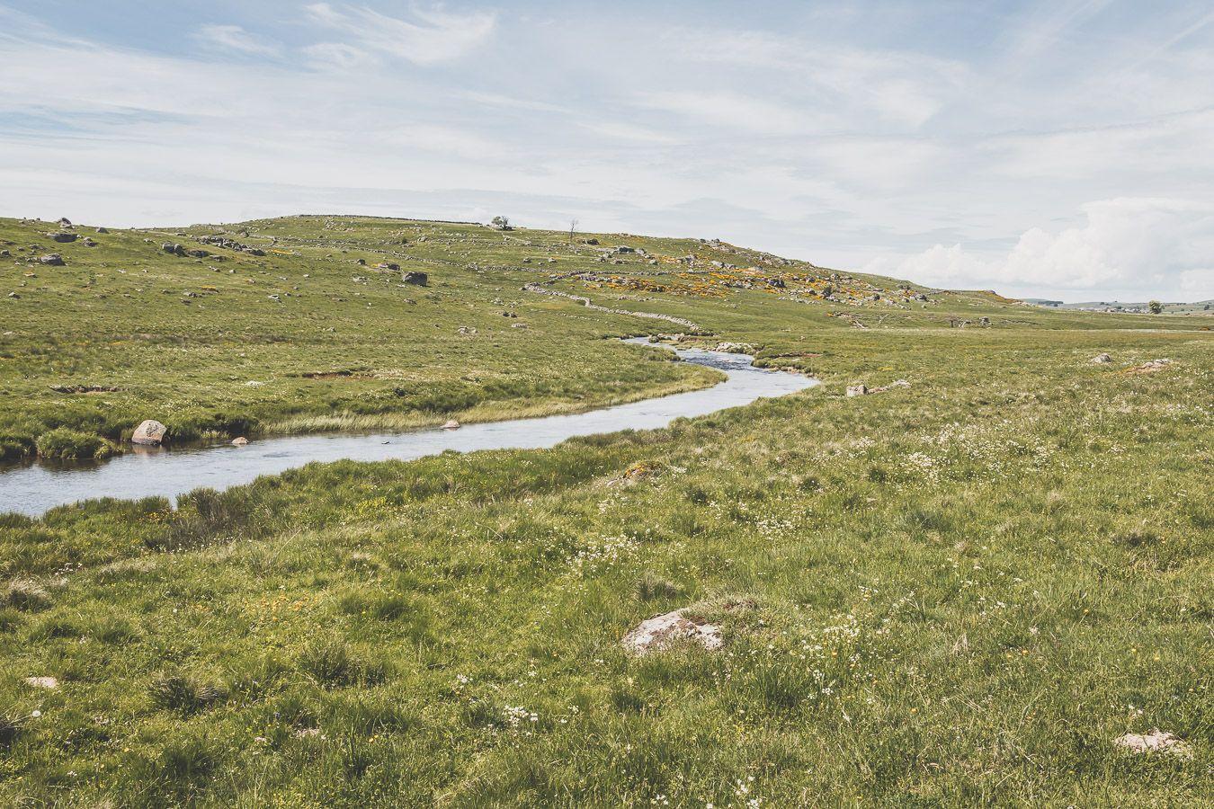 Ruisseau sur l'Aubrac