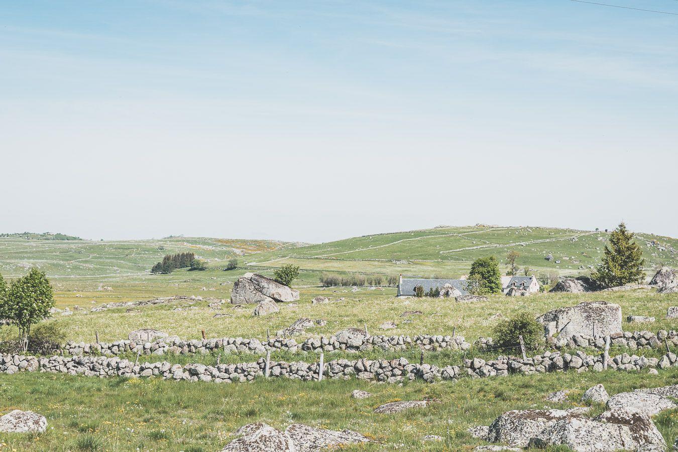 Paysage lozérien - découverte des monts d'Aubrac
