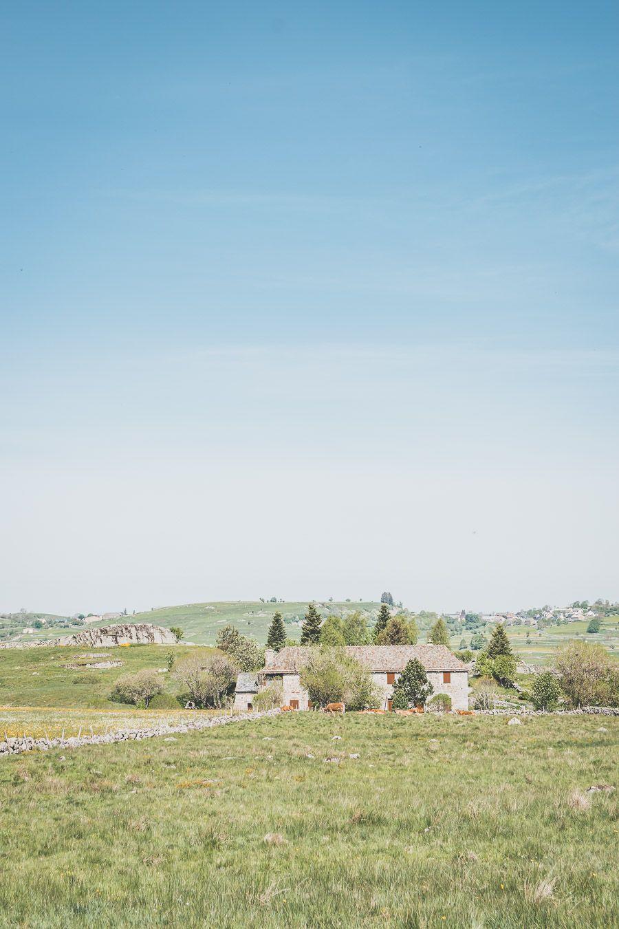 Découvrir l'Aubrac - Occitanie, France