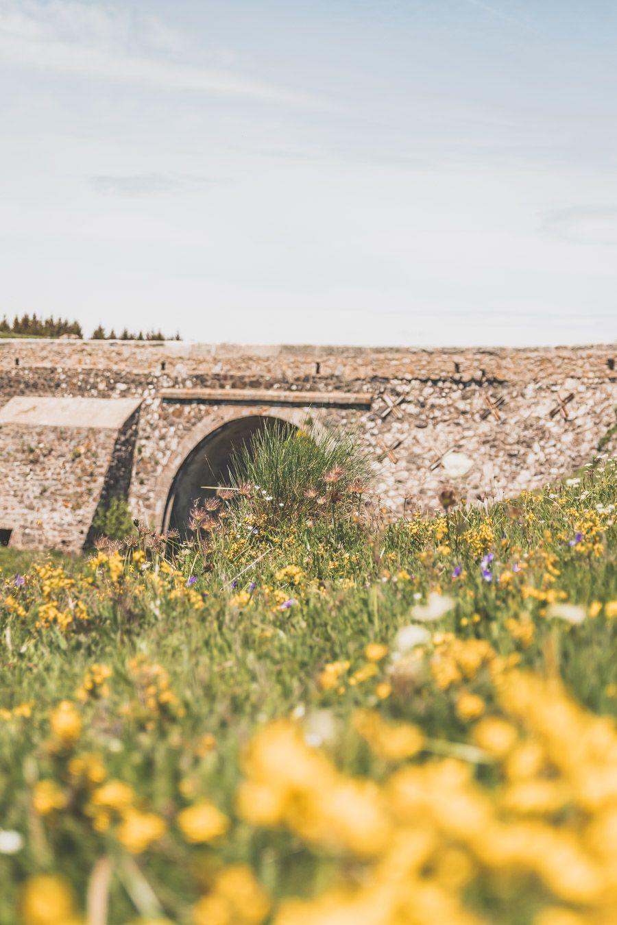 Randonnée sur l'Aubrac - Occitanie, France