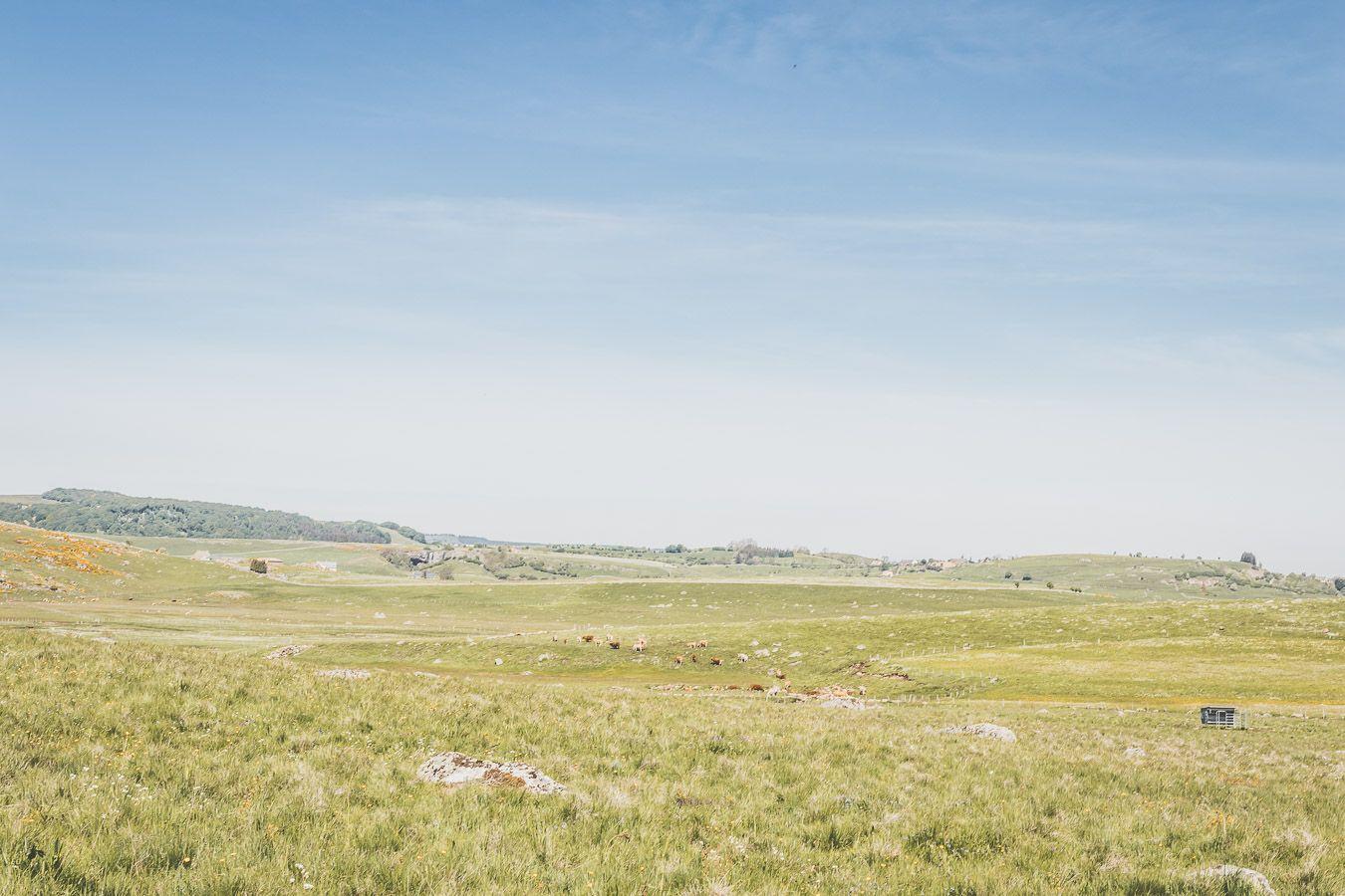 Paysage du village de Marchastel en Lozère