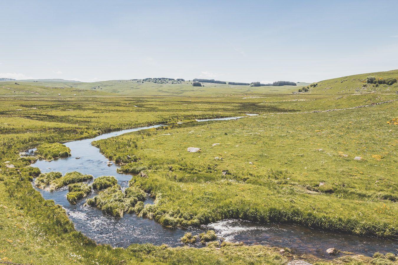 Ruisseau en Lozère