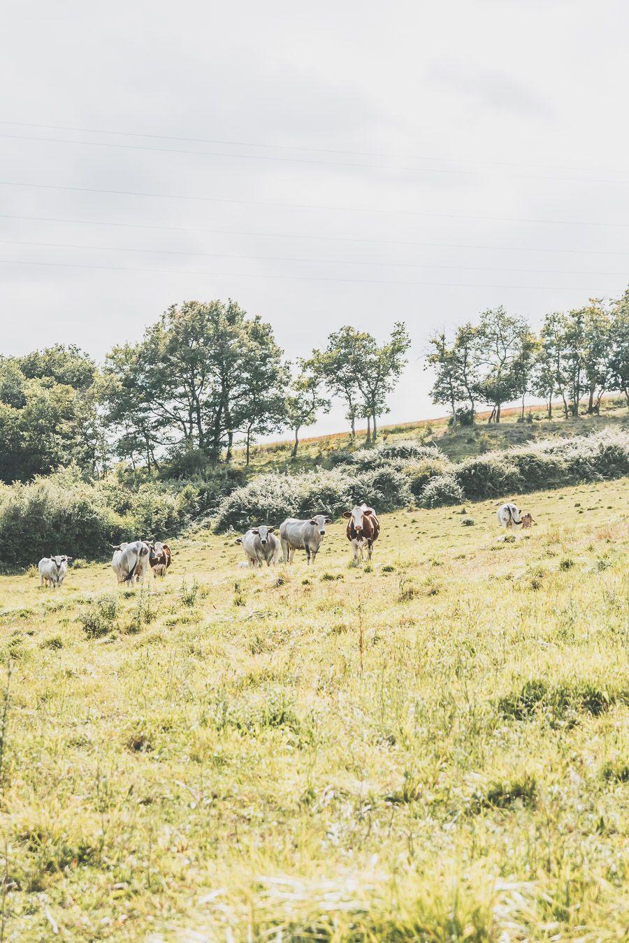 week-end nature dans le Gers