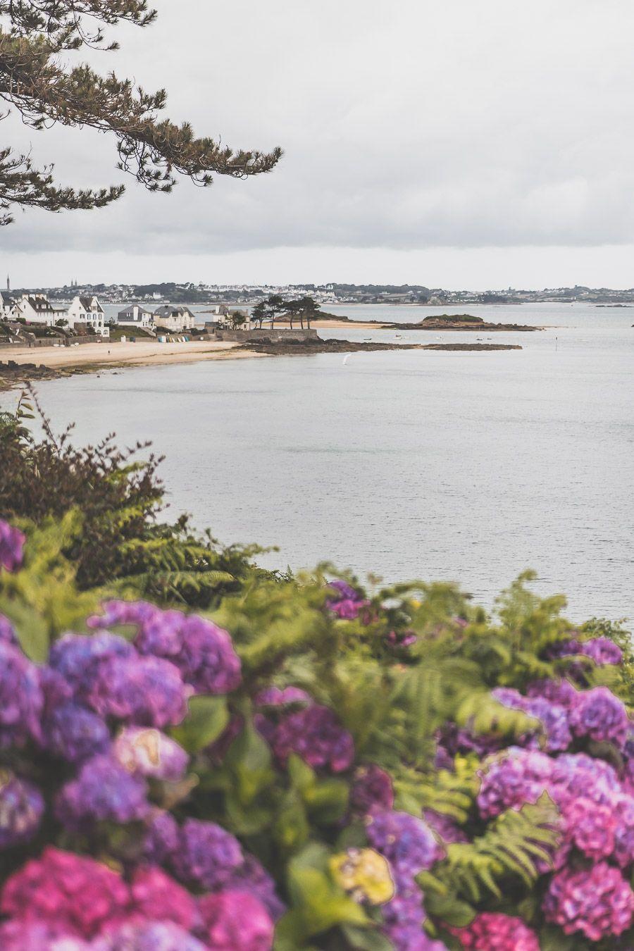 Sortie Nature dans le Finistère Nord
