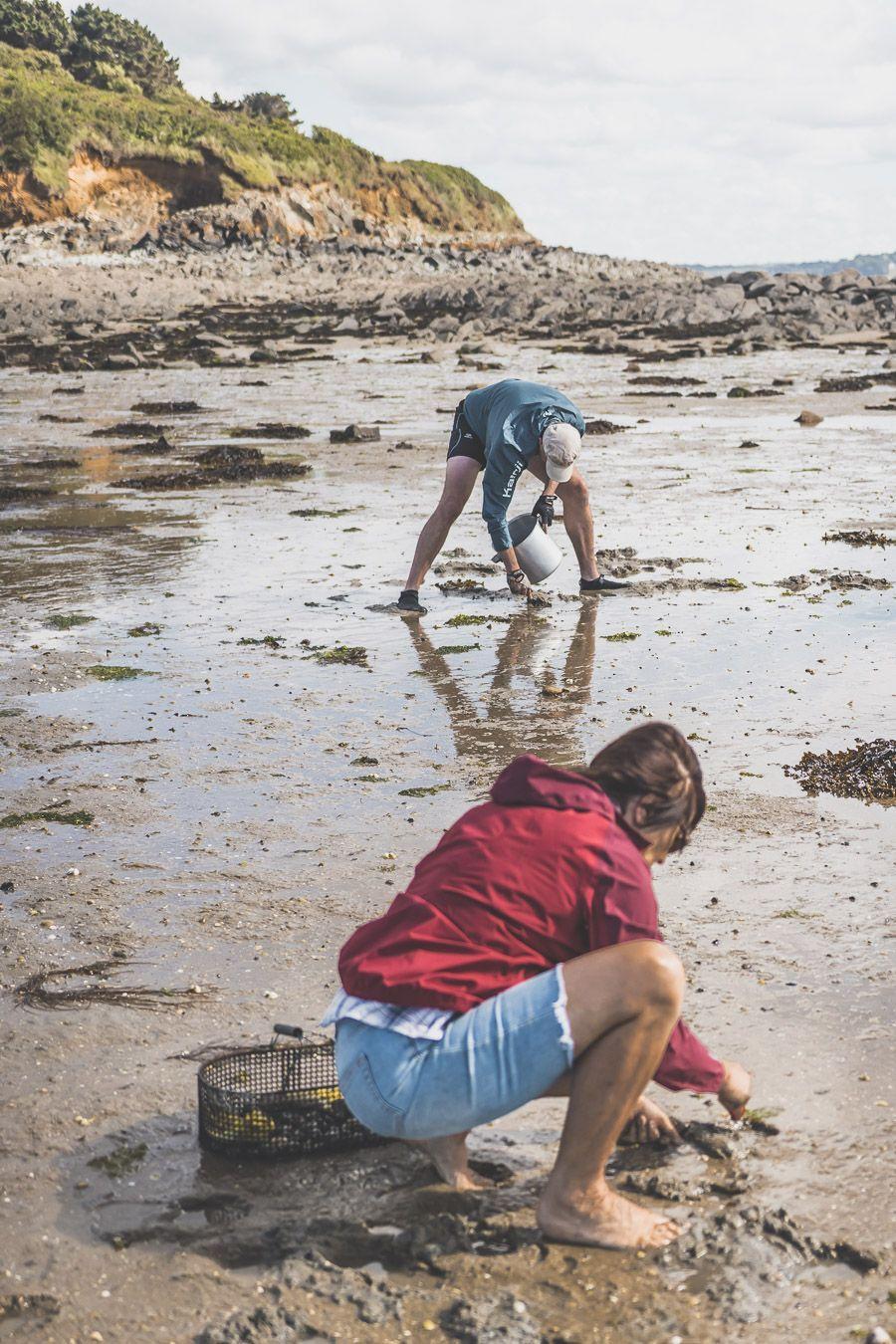 Pêche à pied dans le Finistère
