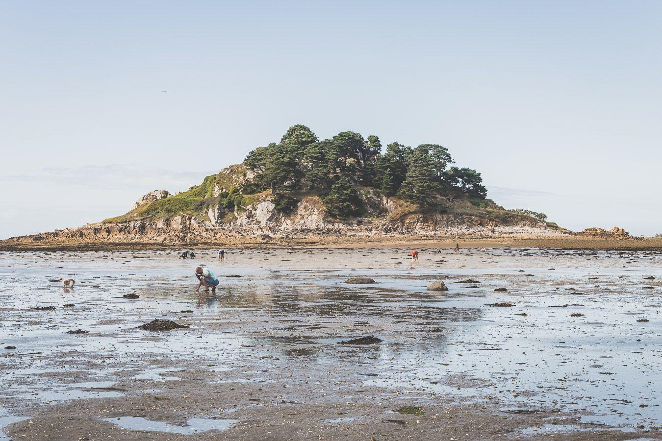 Marée basse en Bretagne