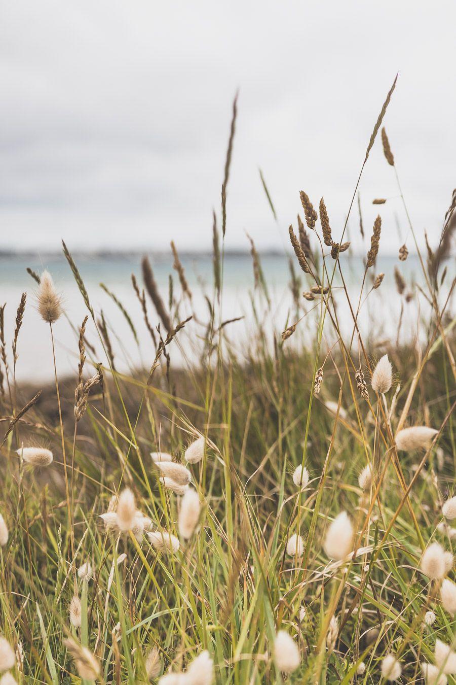 Les plus beaux endroits de la Baie de Morlaix