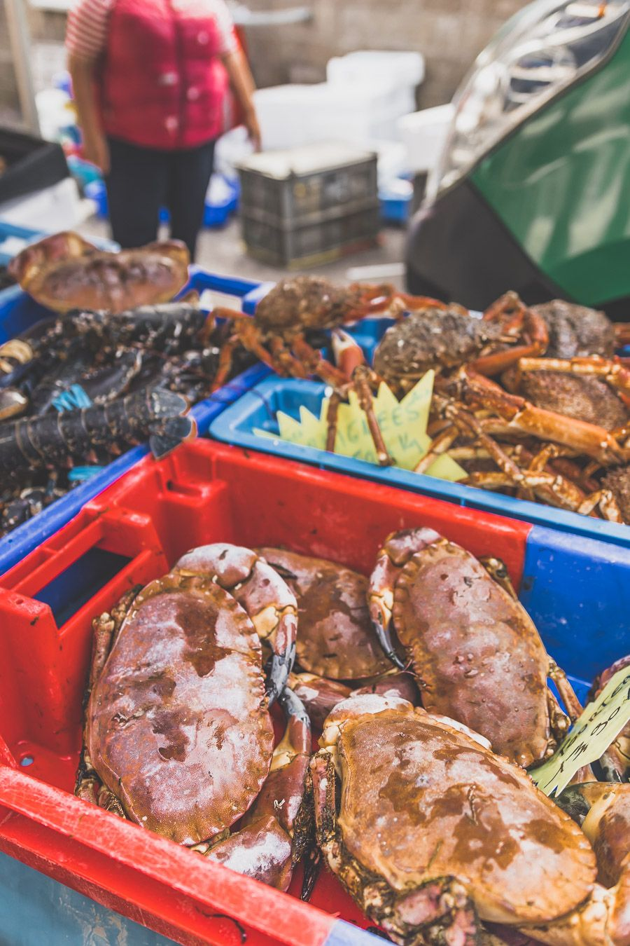 Crabes à Morlaix