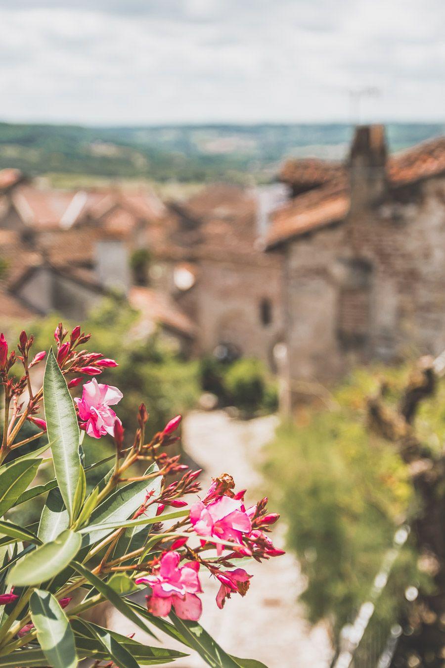 Fleurs à Penne-d'Agenais