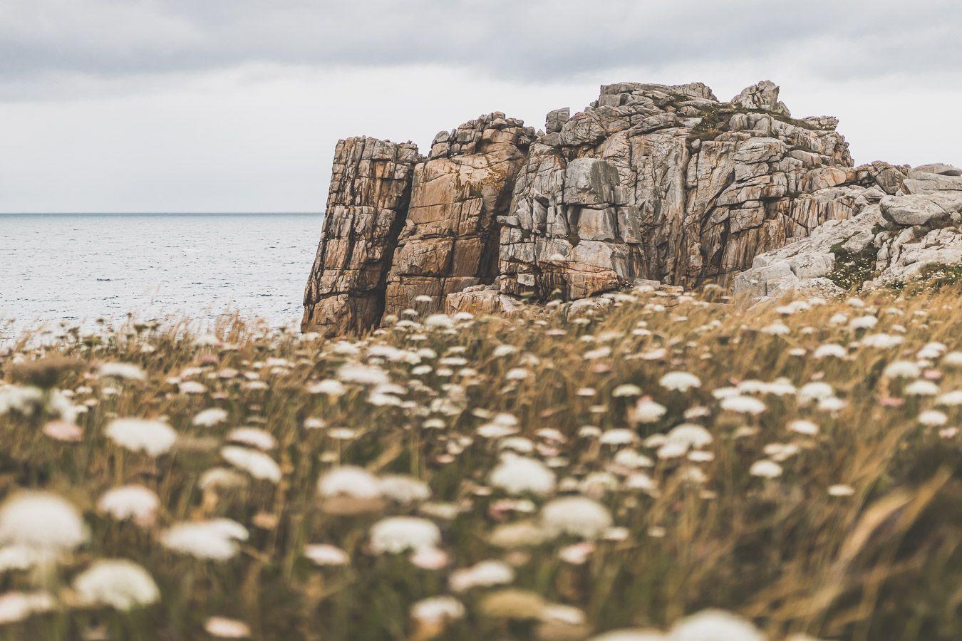 Plougrescant : falaises