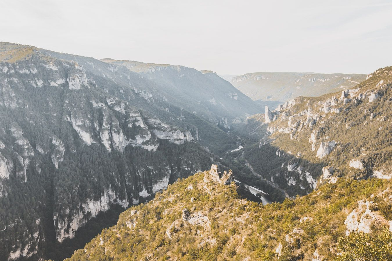 Le Tarn qui serpente au milieu des falaises