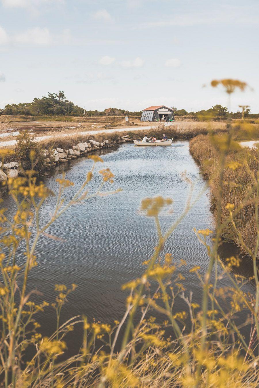 Marais salants sur l'île d'Oléron